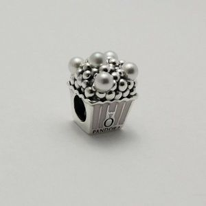 New Authentic Pandora 925 Sterling Silver Charm